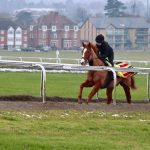 Selma Grage from Newmarket Race Course Interview